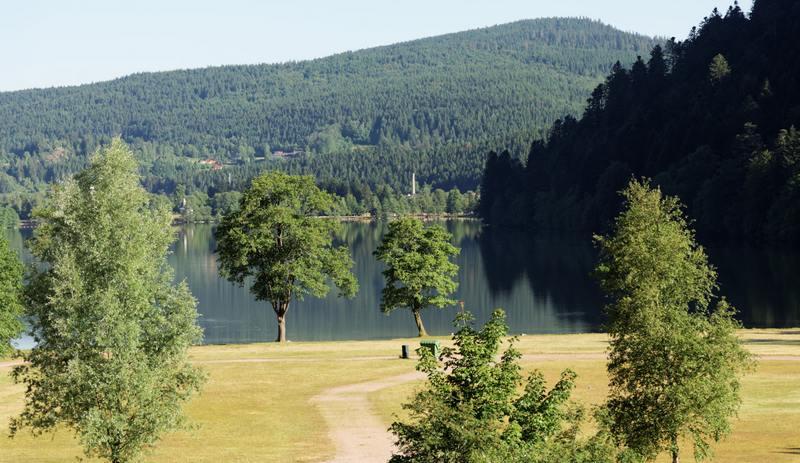 Hotel l'Orée du bois au lac de Longemer